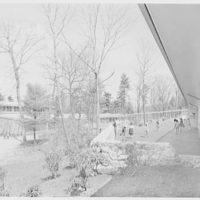 The Country School, Weston, Massachusetts. Exterior IX