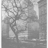 Colgate-Palmolive Building, 300 Park Ave., New York City. Through tree