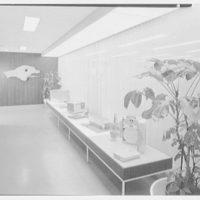 Raymond Loewy Corporation. Display corridor
