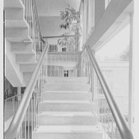 Central Nassau Medical Group, 226 Clinton St., Hempstead, New York. Stair detail
