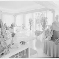 Hattie Carnegie, business in Ponciana Plaza, Palm Beach. Interior II