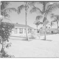 Port Royal Beach Club. Pool with figures