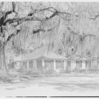 Mrs. Reynolds Bagley, Musgrove Plantation, residence on St. Simons Island, Georgia. Grove house from left