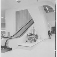 Stewart & Co., business in Reisterstown Rd. Plaza, Baltimore, Maryland. To escalator