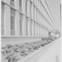 Liberty Mutual Life Insurance Co., 444 Merrick Rd., Lynbrook, Long Island. Sharp sidewalk view of north facade