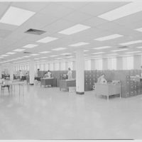 Liberty Mutual Life Insurance Co., 444 Merrick Rd., Lynbrook, Long Island. Third floor, filing cases