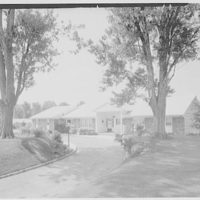 Kane, residence in Kings Point, Great Neck, Long Island. Entrance facade through two trees