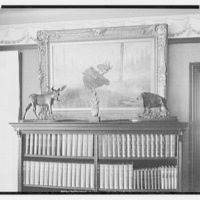 Sagamore Hill, residence of Theodore Roosevelt. Library, detail II